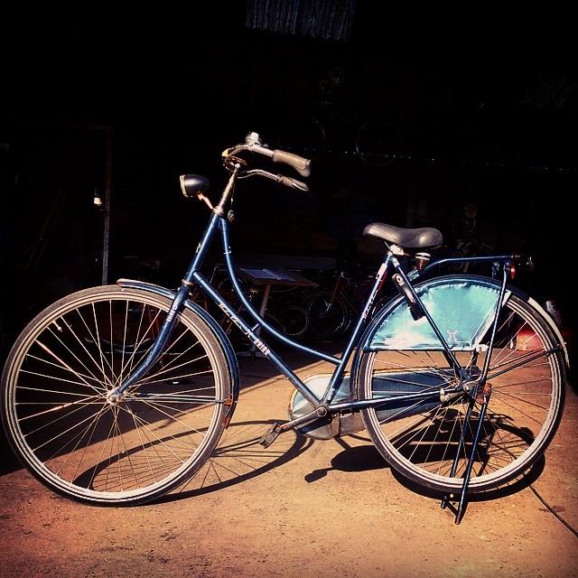 Velos Hollandais Bicycletimes Elabo Rennes